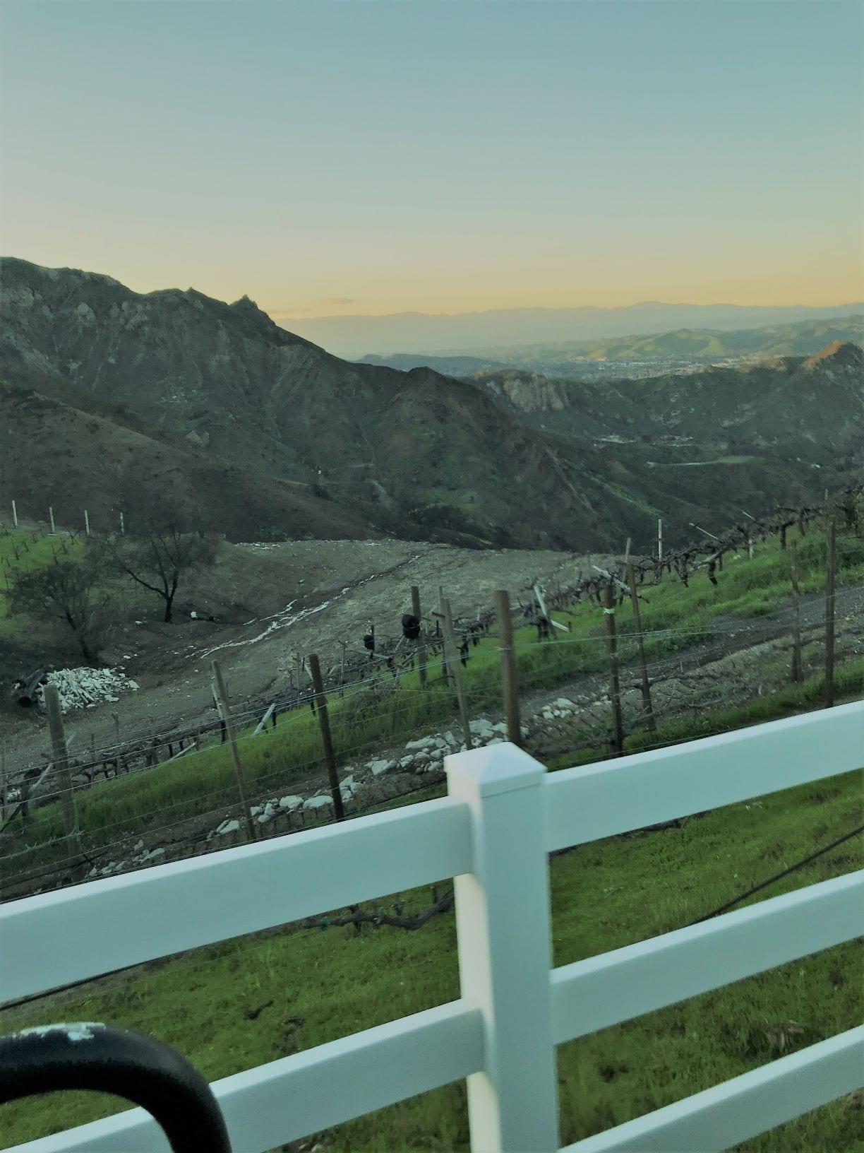 A view of the Malibu vineyard cliffs