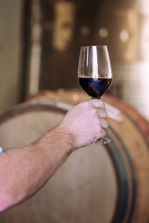 Cropped shot of a man holding a glass of wine in a wine cellar